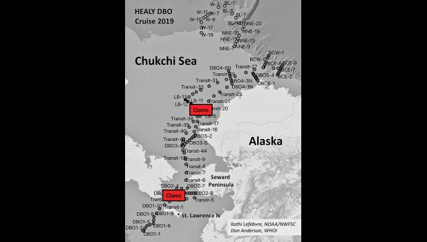 The graphic depicts the location where the clams where found that tested for unsafe saxitoxin levels.