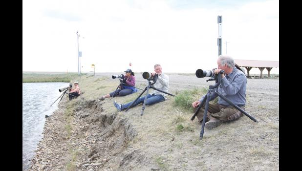 Birders looking for birds at a pond near Nome.