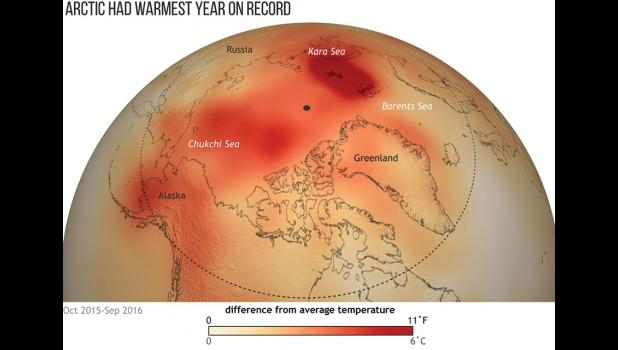 The Arctic had its warmest year on record.