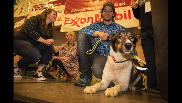GOLDEN HARNESS WINNER— Joar Leifseth Ulsom's lead dog Russeren received the Lolly Medley Memorial Golden Harness Award, presented by the City of Nome.