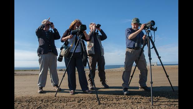 OPTICS – Four British birders armed to the teeth with high-powered optics enjoy the fauna along the Council Road Saturday.